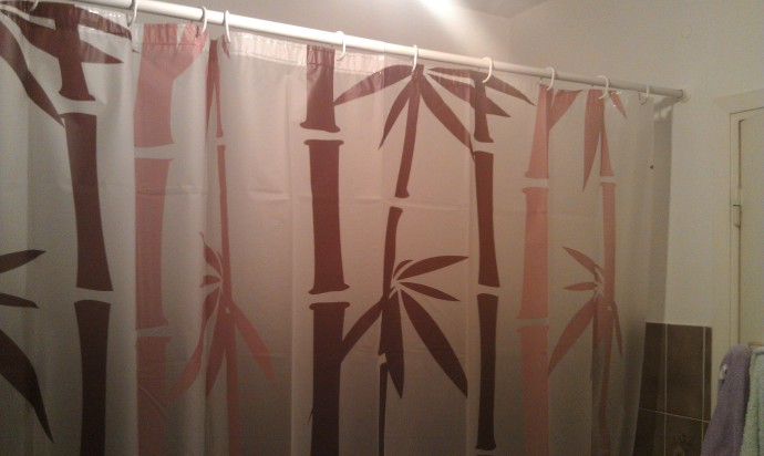 I got a new shower curtain for our bathroom, and it matches!  Our old one was GROSS.  I'll spare showing you the picture.