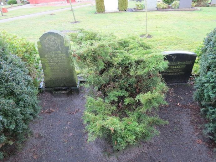 My ancestors' graves!